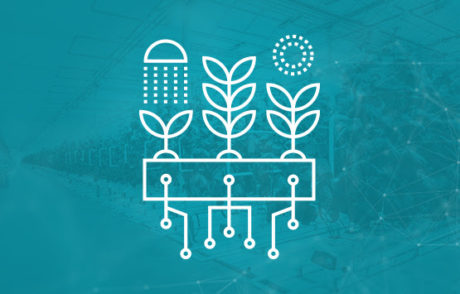 Enhancing Automation in Controlled Environment Agriculture Farming
