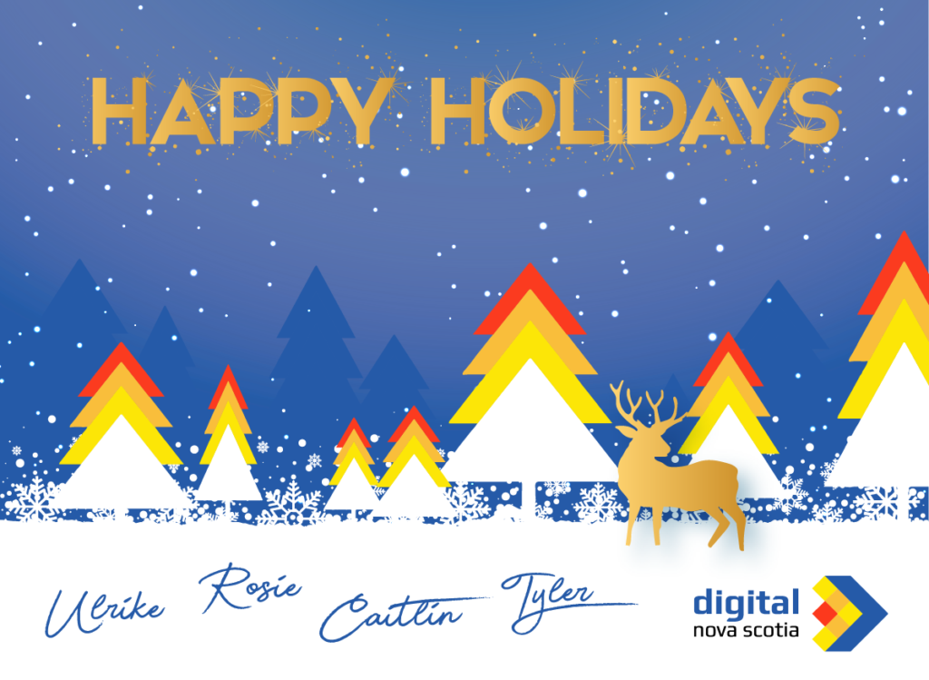 Happy Holidays from DNS!
