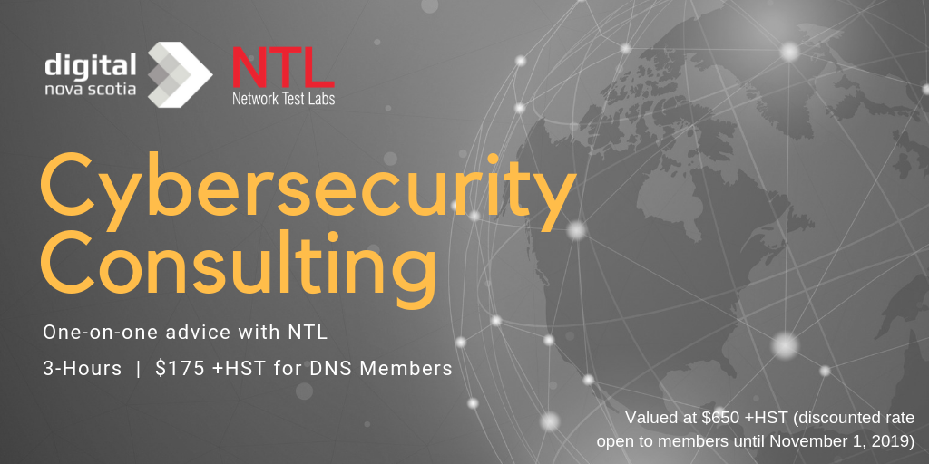 Cybersecurity Consulting Offer for DNS Members!