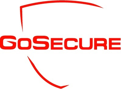 Junior Analyst in Cyber Security
